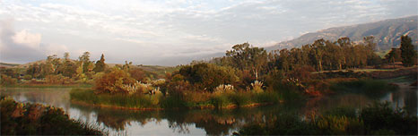 Photo of Los Carneros